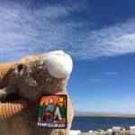 Lodging and camping at Lake John Resort in Walden Colorado
