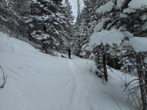 Aspen Acres Campground is great for cross country skiing