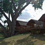 Enjoying a view off of the cabin patios Colorado Springs KOA