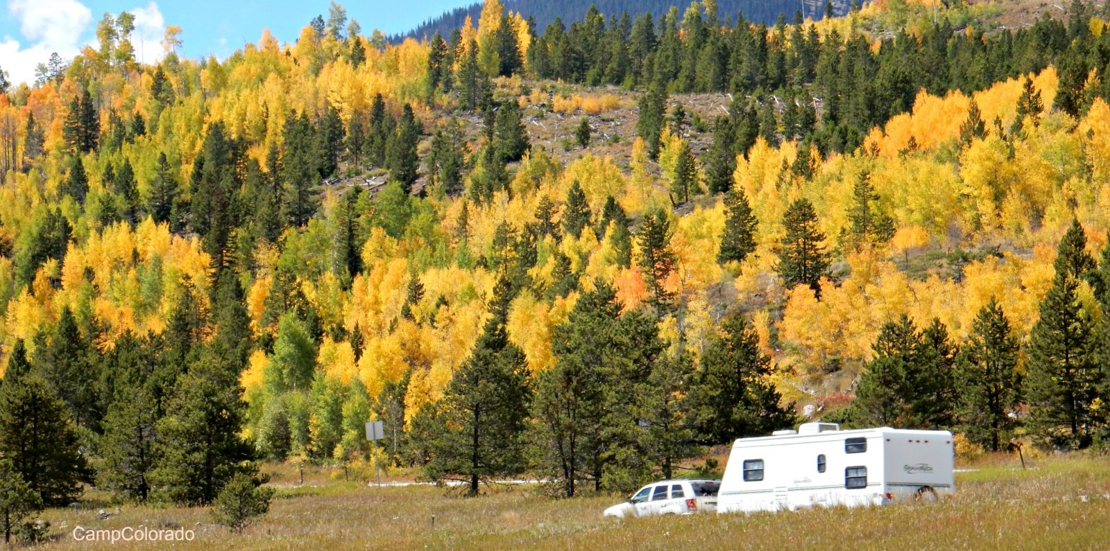 Rving and Aspen leaves in Colorado