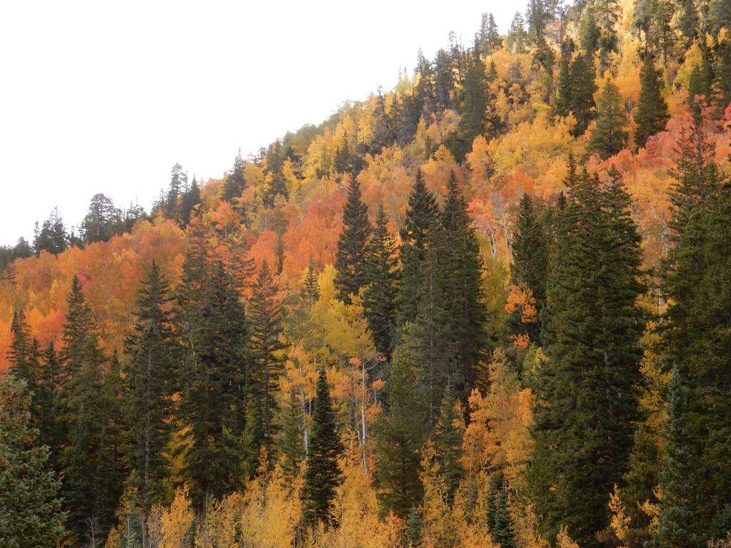 Advantages to Off-Season Camping