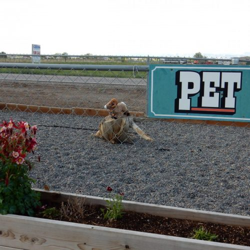 Off-leash Pet area at Junction West RV Park in Grand Junction Colorado