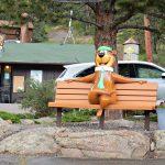 A favorite bench to enjoy the view at Jellystone Park™ of Estes in Estes Park Colorado
