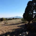 The Views RV Park & Campground (Dolores Colorado)