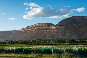 Grand Mesa in the Mountains and Mesas Region of Colorado