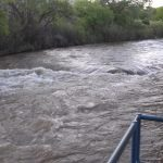 San Miguel is running high (near High Country RV Park in Naturita CO)