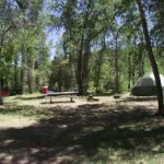 A beautiful place to set up a tent for camping at Dolores River Campground