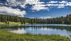 Visit Grand Junction photo of alpine lake Grand Mesa