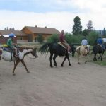 If you love horses you will love Winding River Resort Village in Grand Lake, Colorado