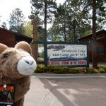 Welcome to the Bristlecone Lodge, B&B, Cabin rentals and RV Park!