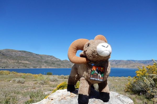 Ramsey Campin'Ram is the Camp Colorado mascot and