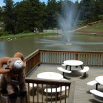 What a relaxing place at Colorado Heights Campground by the pond!