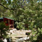 Shady cabins at Glenwood Canyon Resort!