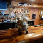 Bar service, anyone? ~ River Forks Campground in Drake Colorado