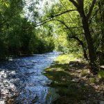 Big Thompson River - Riverview RV Park (Loveland, Colorado)
